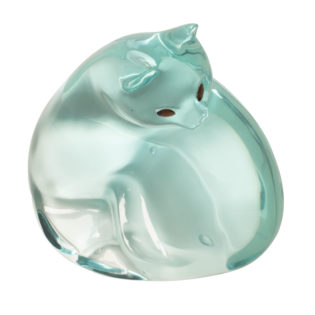 Blue-Green Cat