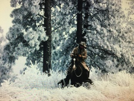 Riding Through Pogonip by Lane Baxter